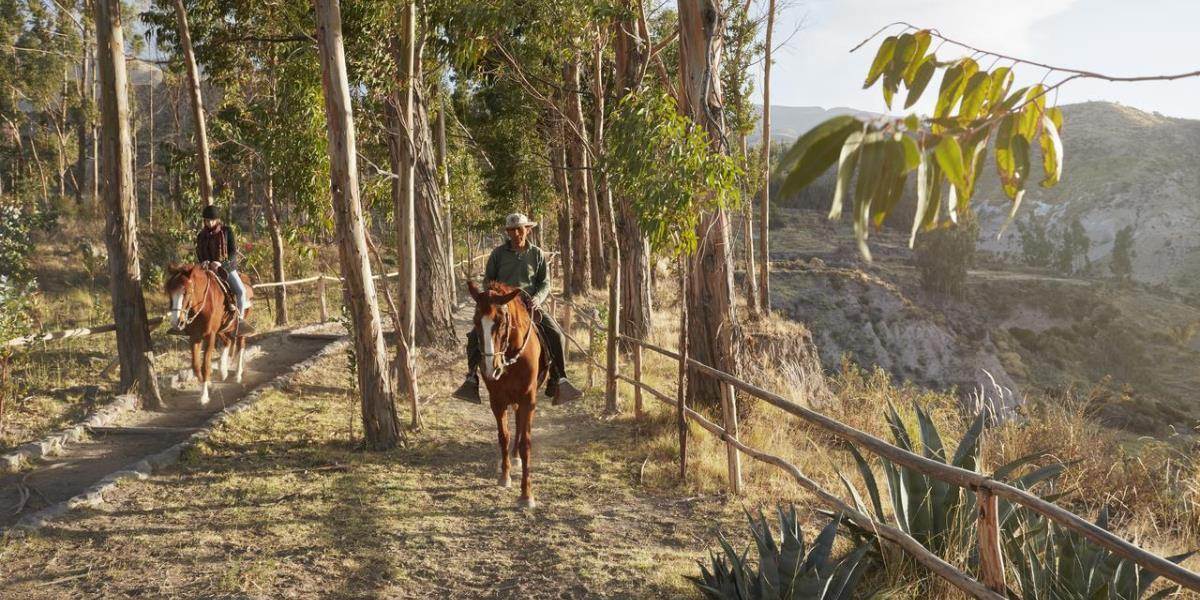 [copyright]Horse riding in Peru, at Belmond Las Casitas.[/copyright]
