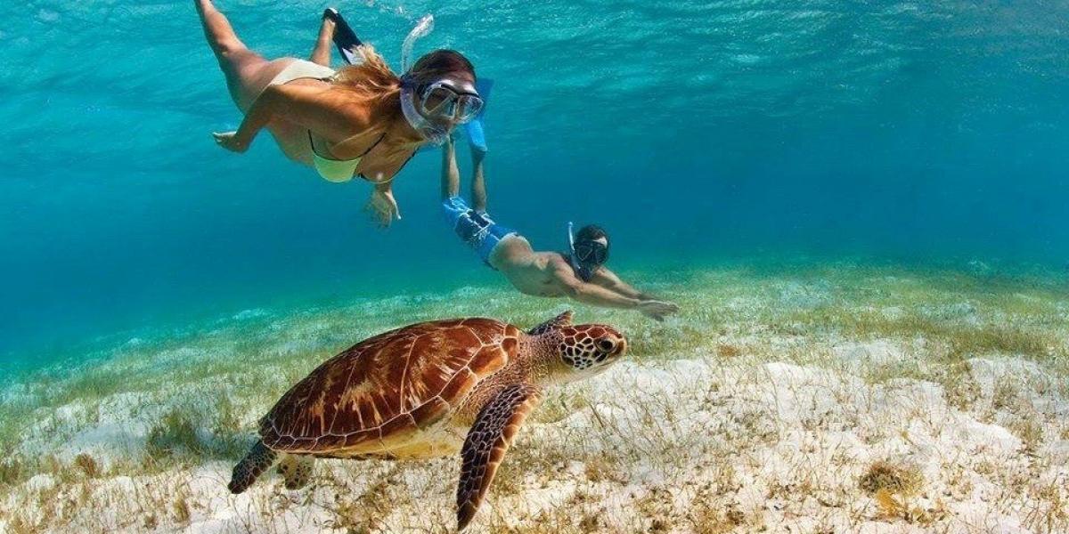 © Tropical Adventures.