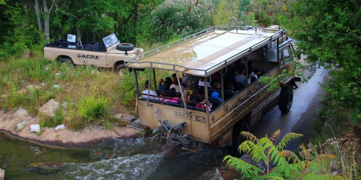 Zufari: Ride into Africa at Chessington World of Adventures.
