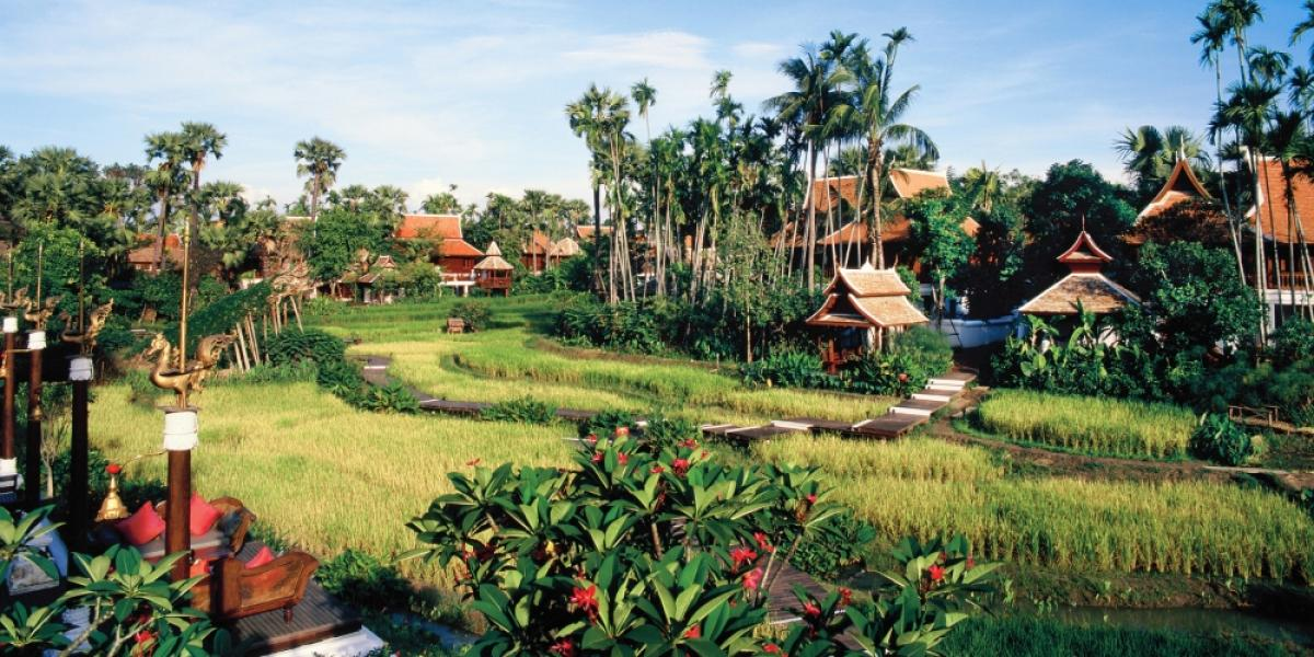 Villas in the rice field at Dhara Dhevi Chiang Mai.