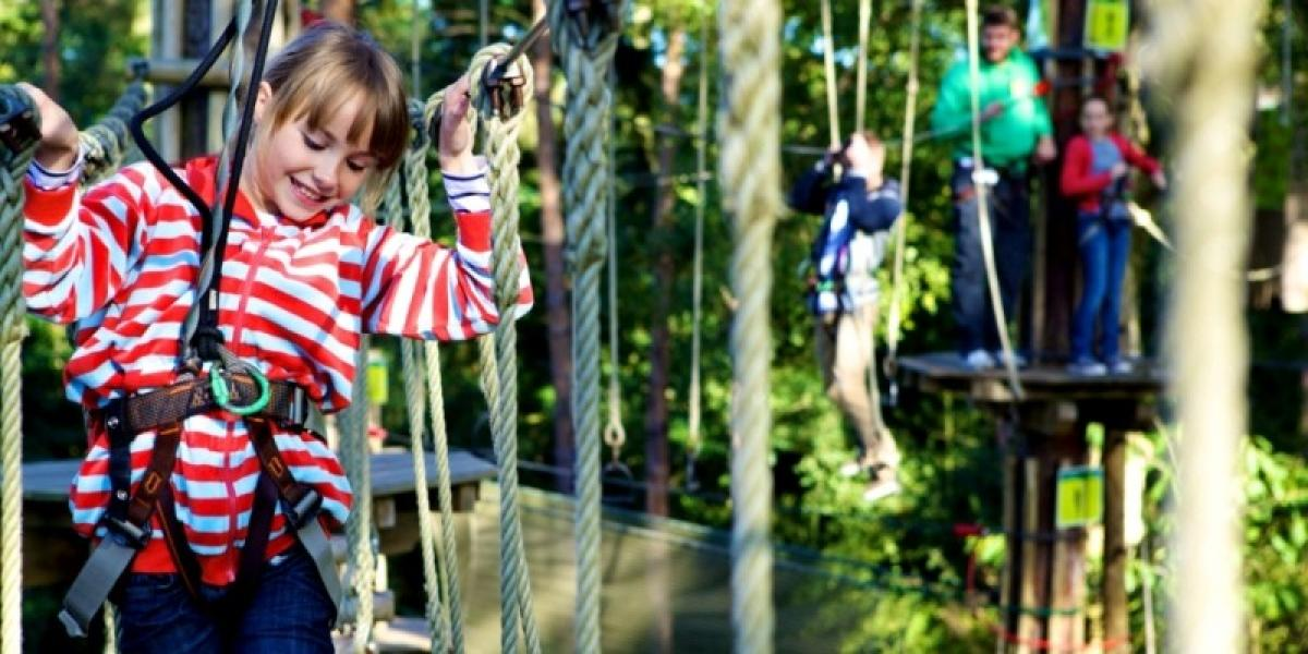 Exploring the treetops of Go Ape in Kent.