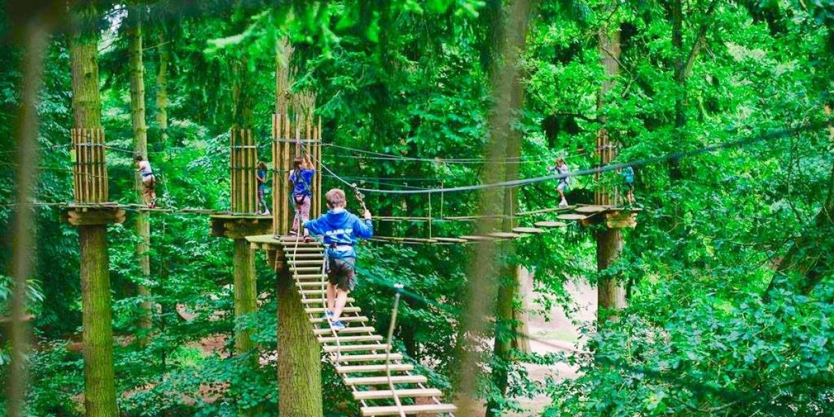 Go Ape Tree Top Junior.