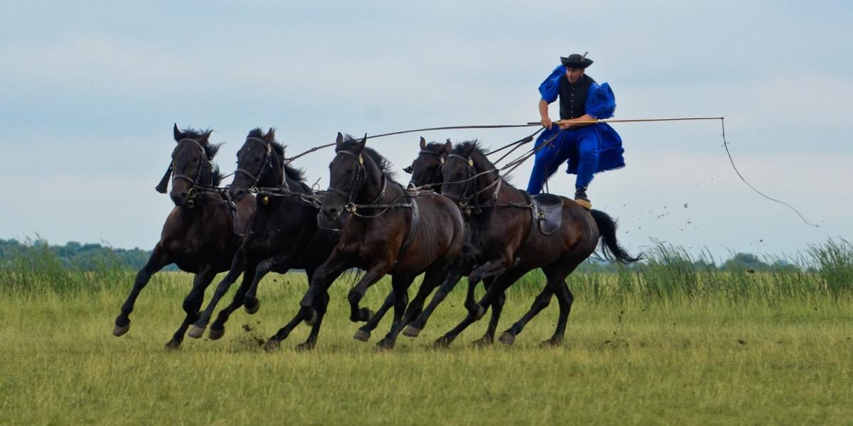 Horseman at the Puszta Animal Park.