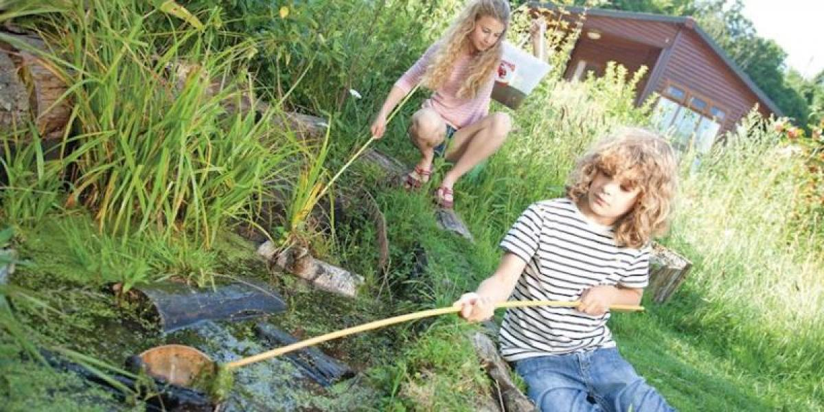 Pond-dipping at Waveney River Centre.