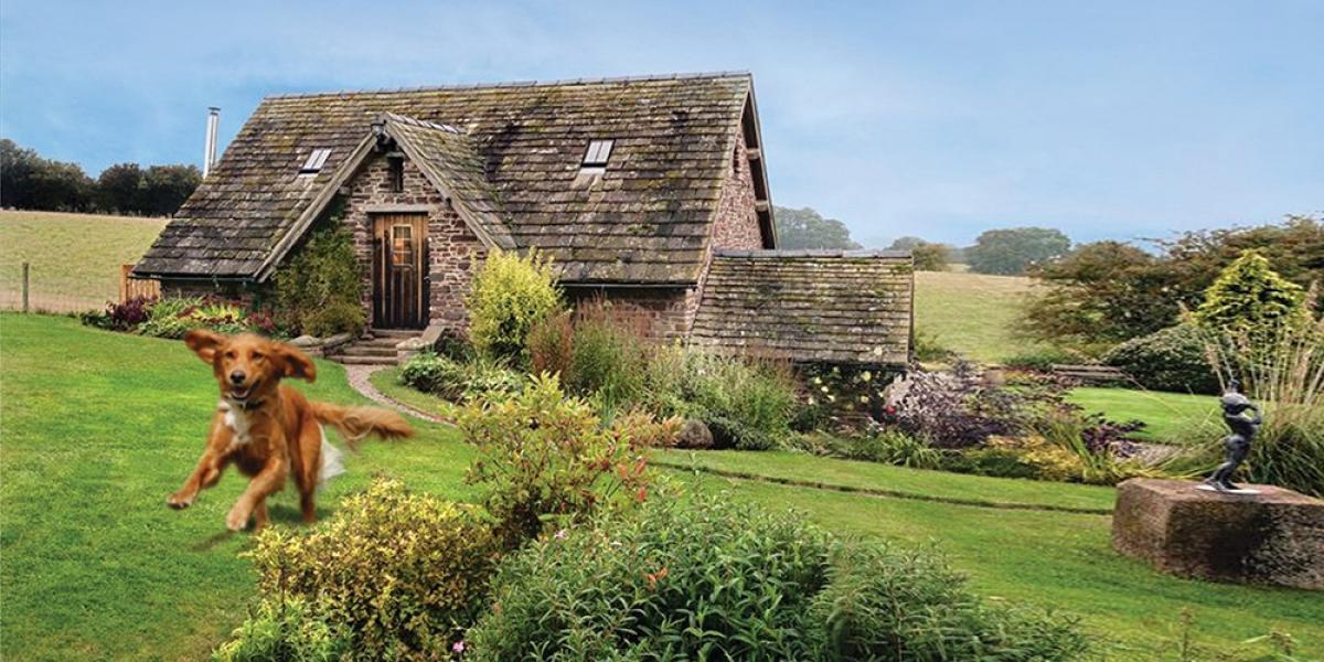 A dog-friendly cottage.