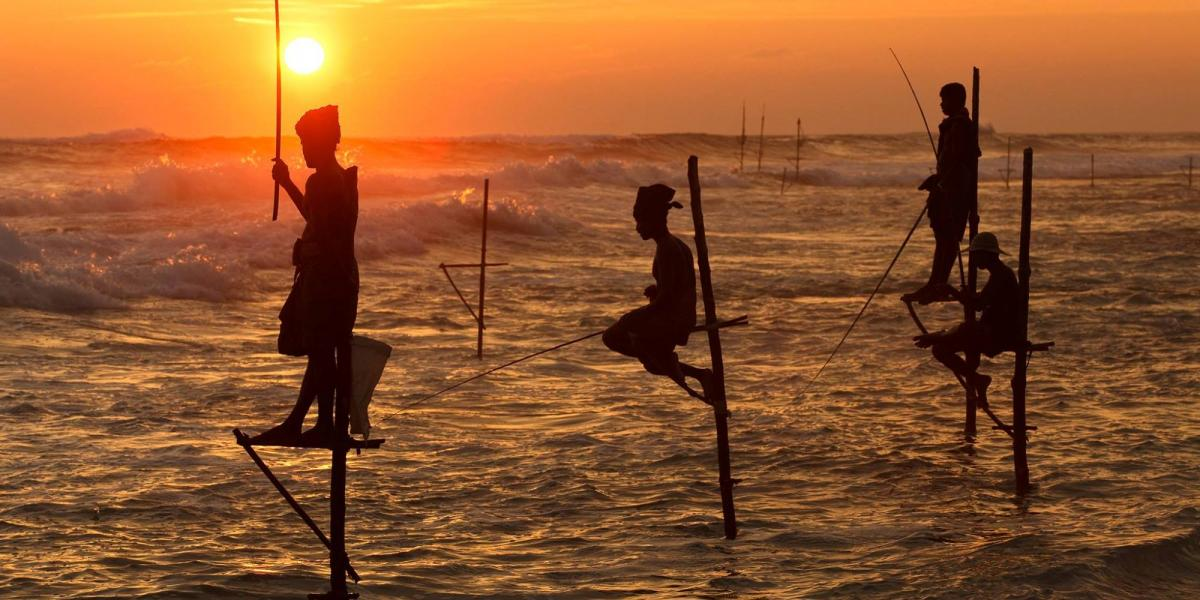 Traditional fishing in Sri Lanka.