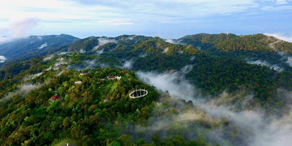 The treetop walkway at The Habitat, Penang Hill.