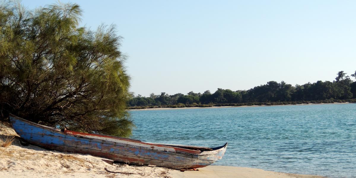 Tróia Peninsula, Alentejo © .