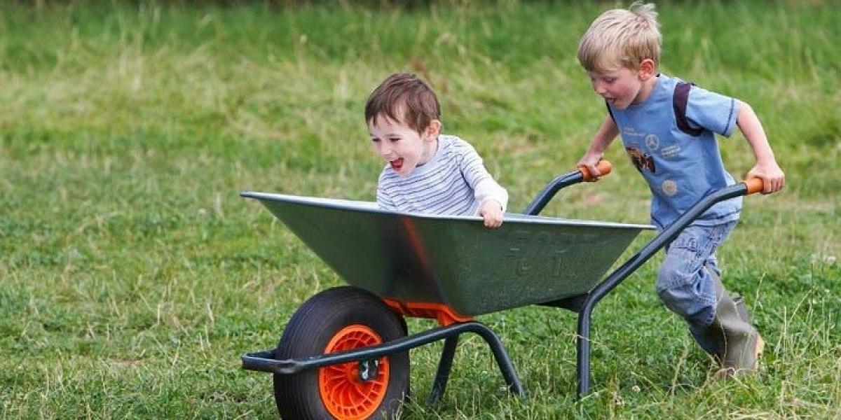 Boys playing at Lower Rodhuish Farm.