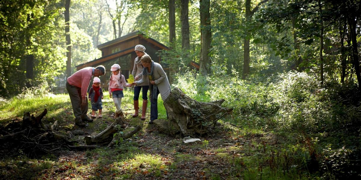 Forest Holidays family breaks